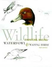 """Wildlife Painting Basics - Waterfowl & wading Birds"" by Rod Lawrence"
